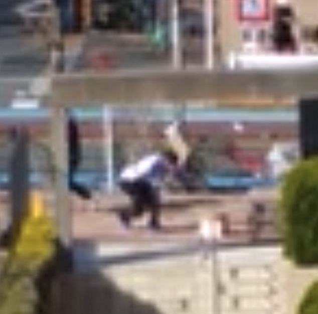 Delivery man in Japan treats his packages badly by smashing them into the ground