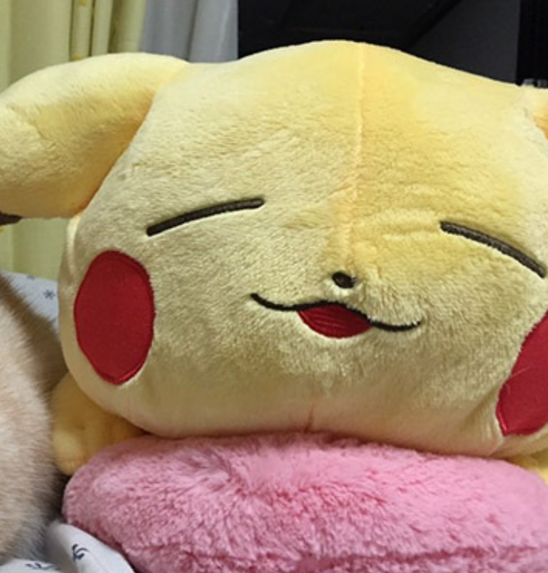 Pikachu (a mouse) is being friends with a cat