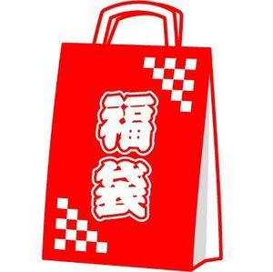 Behold! This severe battle over 福袋 (Lucky Bag) in Japan!