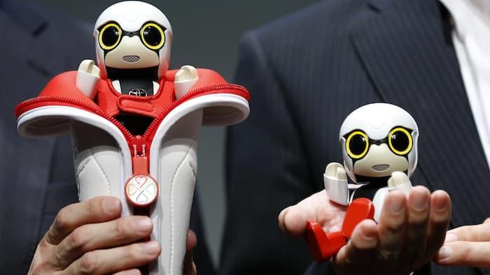 Mini companion robot from Toyota, Kirobo