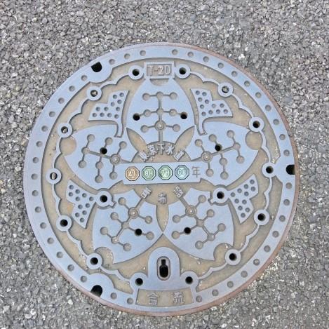 Let's check out unique Manhole design in Japan!!