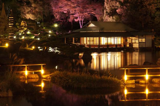 Beautiful nature escapes for your trip in Tokyo